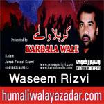 http://www.humaliwalayazadar.com/2016/08/waseem-rizvi-nohay-2003-to-2017.html
