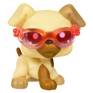 Littlest Pet Shop Singles Boxer (#1516) Pet