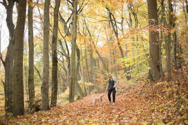 Fräuleins wunderbare Welt Mina Herbstwald Blogvorstellung