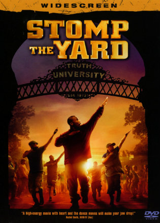 Stomp The Yard 2007 BRRip 480p Dual Audio ESub 300Mb In Hindi English Free Download Movie
