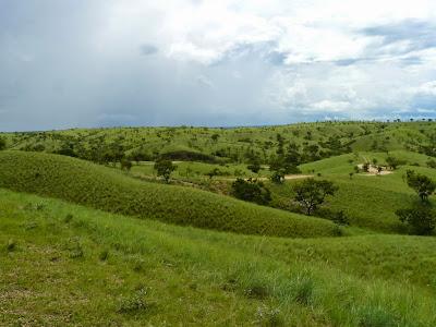Resultado de imagen para Parque nacional Aguaro-Guariquito