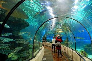 coupon aquarium barcelona