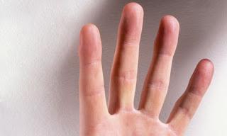 हाथ में चार उंगलियां होती हैं तथा प्रत्येक उंगली किसी एक ग्रह का प्रतिनिधित्व करती है।  · तर्जनी उंगली - गुरु  · मध्यमा - शनि   · अनामिका - सूर्य    · कनिस्ठिका - बुध