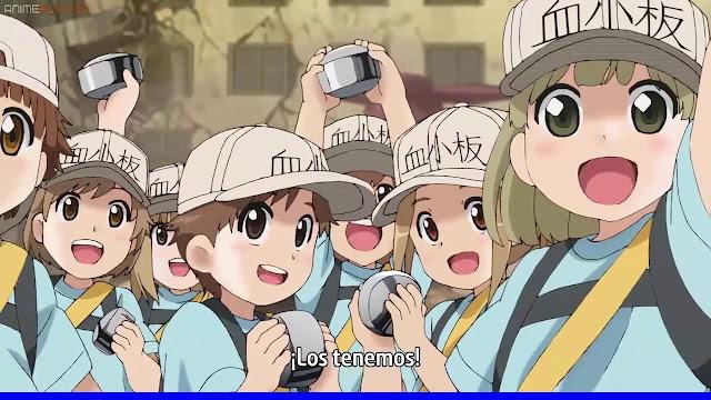 Hataraku Saibou Episode 1-13 Subtitle Indonesia