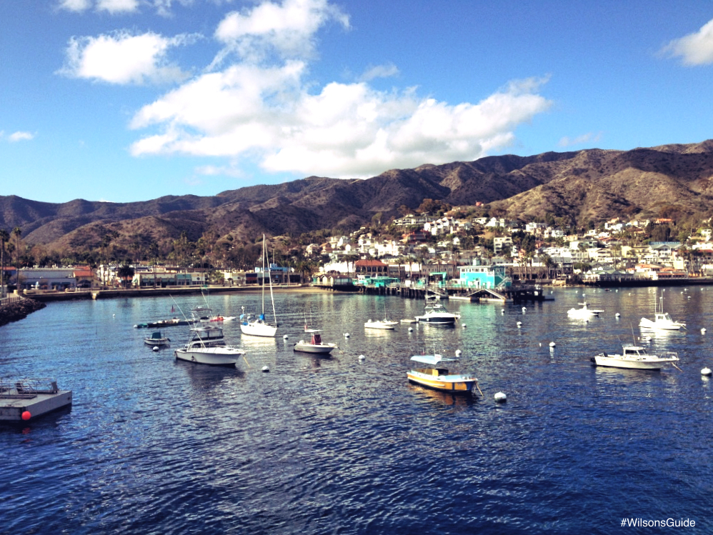 Catalina Island Ferry Discount Codes
