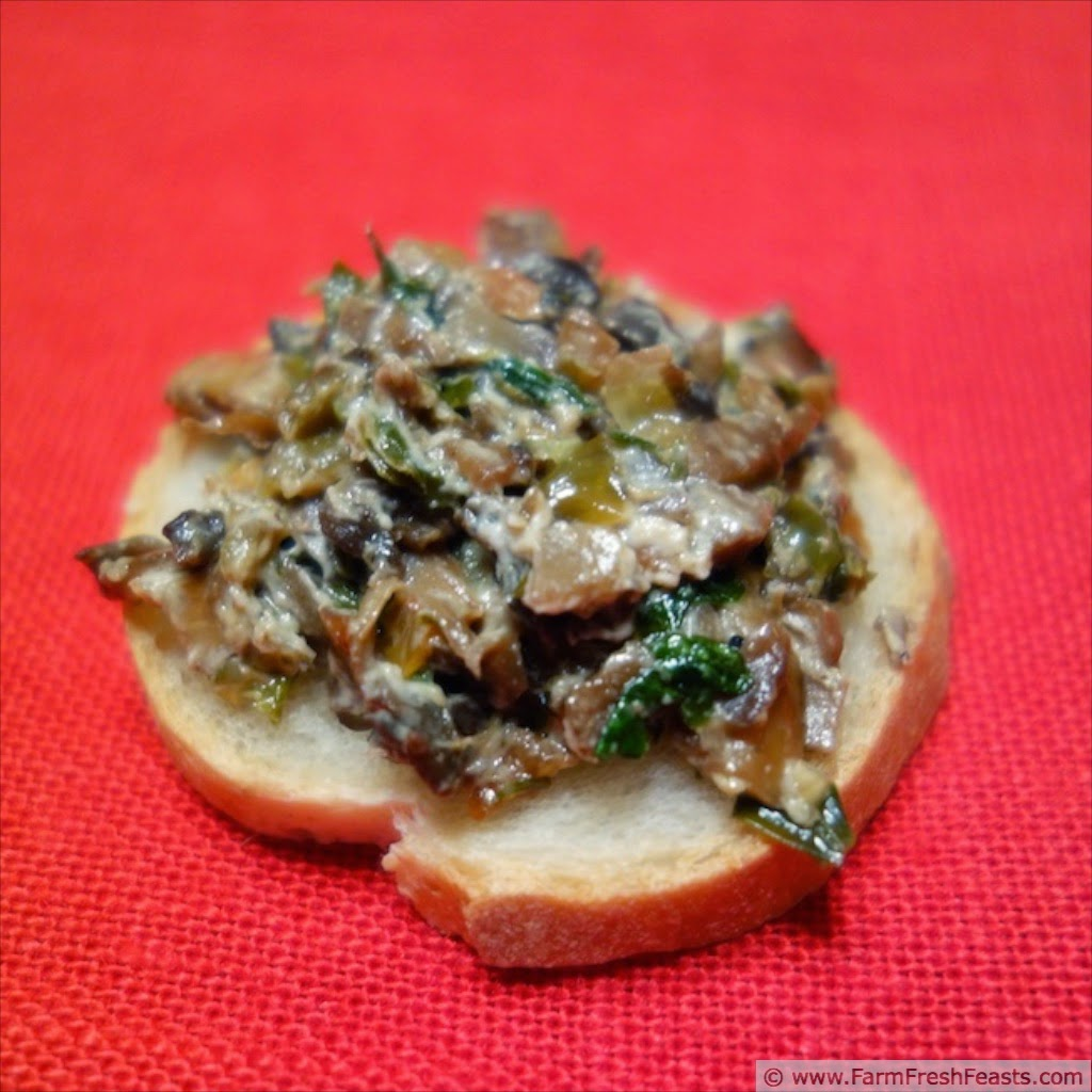 http://www.farmfreshfeasts.com/2013/02/skillet-mushroom-dip-for-two-quick-take.html