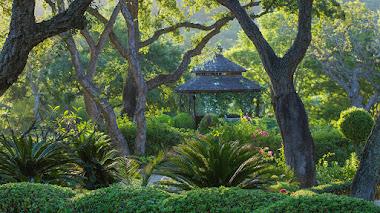 Fotos de jardines en Europa: IGPOTY N.12 European Garden Photography Award