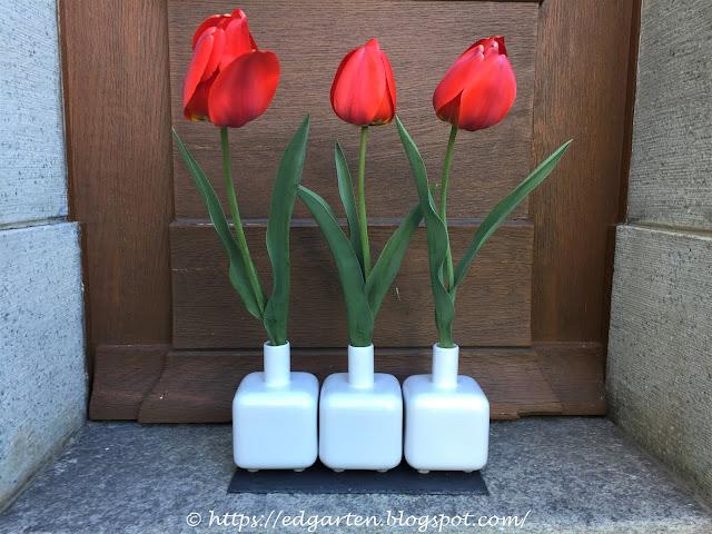 rote Tulpen in der Vase