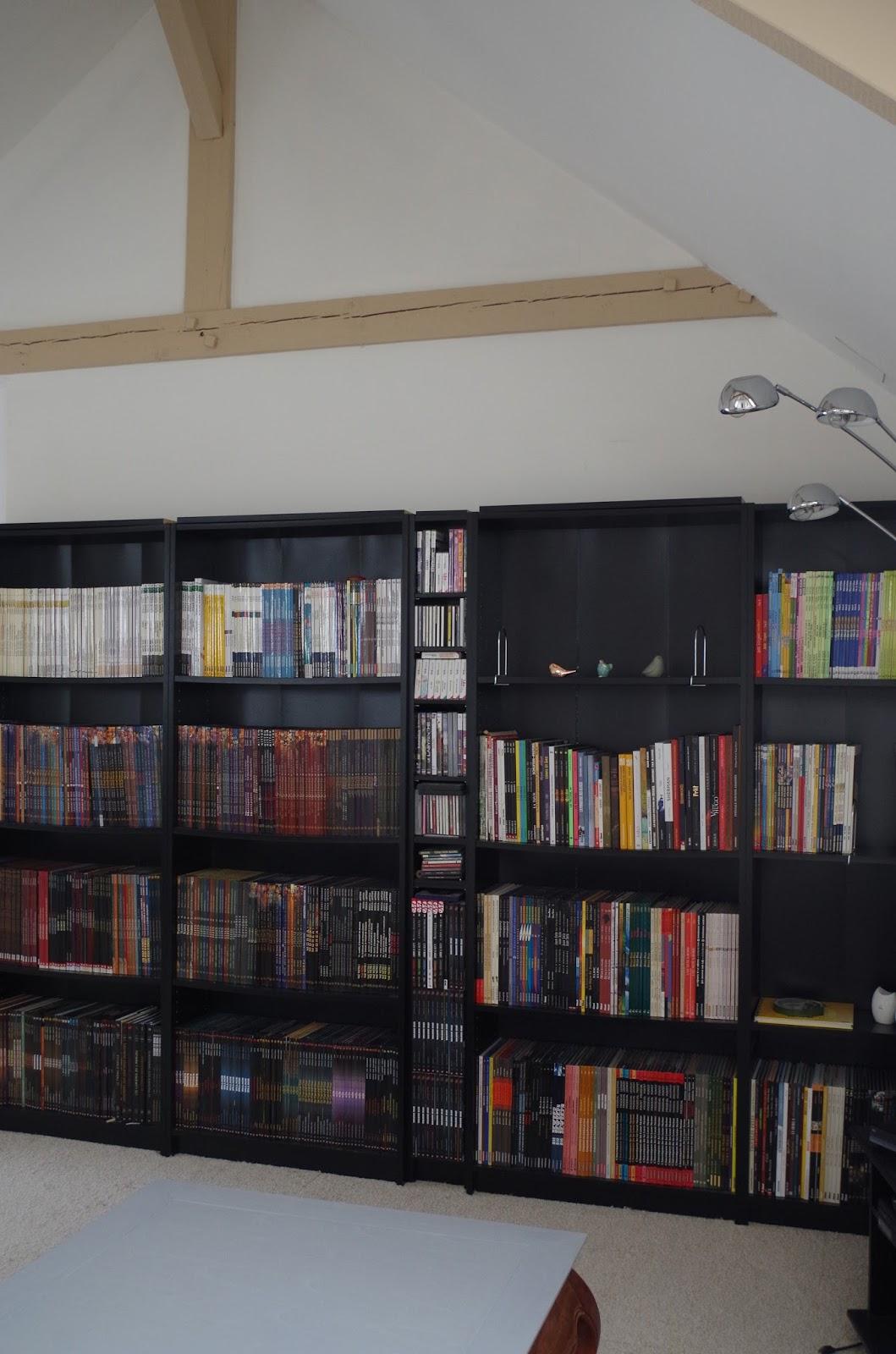 a nous la d co un peu de couleur pour ma biblioth que. Black Bedroom Furniture Sets. Home Design Ideas