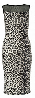 Quiz Leopard Print Midi Dress