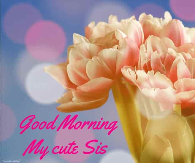 good morning cute sister images