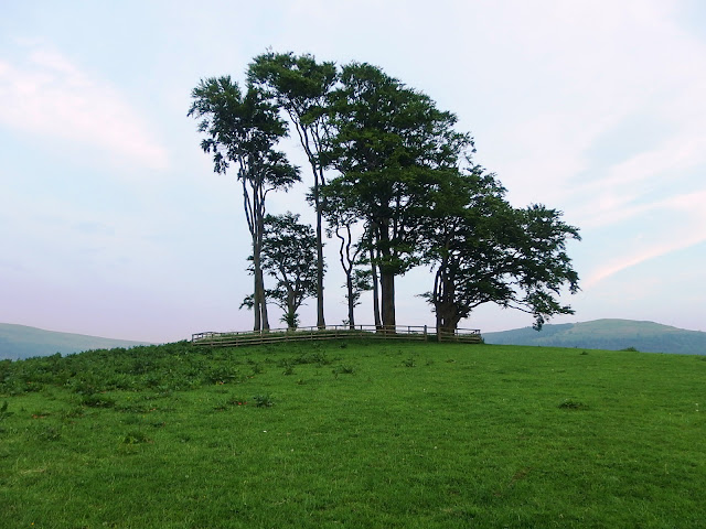 The How aka mound with trees at Ingleby Greenhow