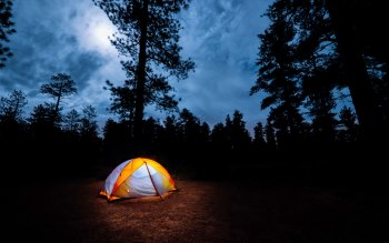 Wallpaper: Camping in the woods