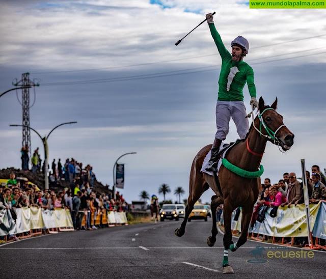 La Palma Ecuestre bate récords de carreras de caballos y de asistencia de público