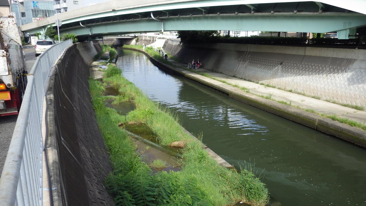 「自由に遊べる自然環境豊かな福田川」を目指して: 「垂水区海岸等一斉清掃」で初めて、福田川流域も本格的に区域に加わりました