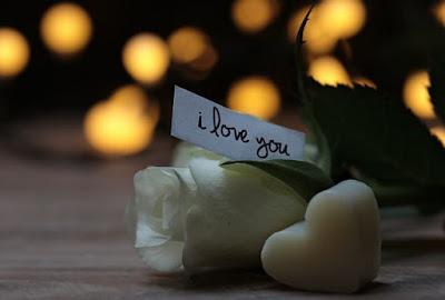 Bunga Mawar, Jantung, Pesan Cinta