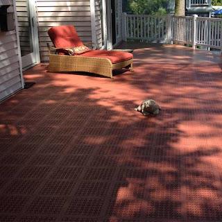 Greatmats deck flooring for kids soft and safe