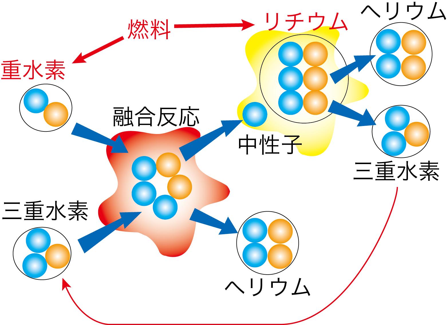 核融合発電所で使われる実際の燃料と反応