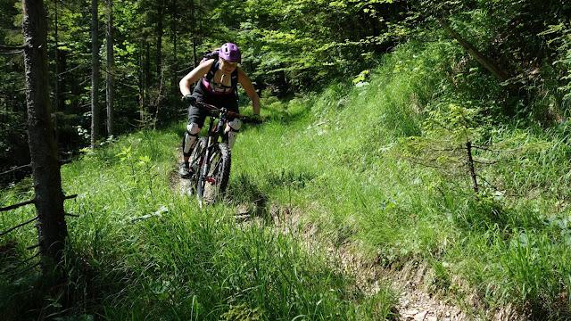 Walchsee Runde Mountainbike