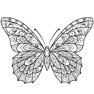 Coloring pages for adults adult mandala coloring book on for Coloring pages of butterflies for adults