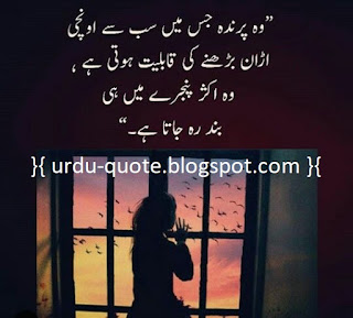 Urdu Lovely Quotes 24