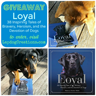 Loyal book review giveaway 3 rescued dogs