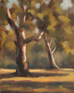 Oil painting of two eucalypts with long afternoon shadows.