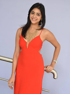 Priyanka Bhardwaj Stills At Mister 420 Movie logo launch 09.jpg