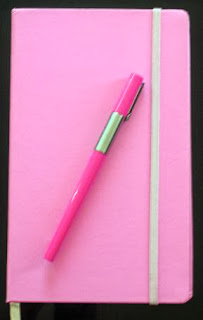 pink journal from The Spiritual Mechanics of Diabetes Blog
