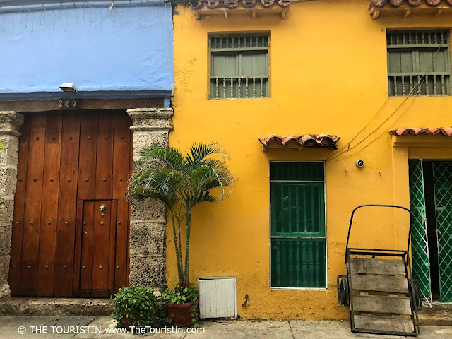 A palm tree, plants and a barrow load in front of light blue and yellow houses with green wooden shutters and a thick wooden door..