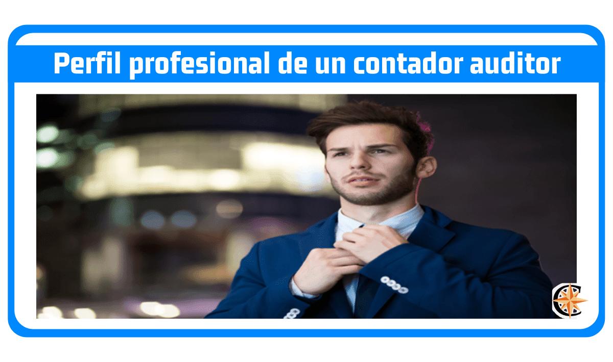 Perfil profesional de un contador auditor