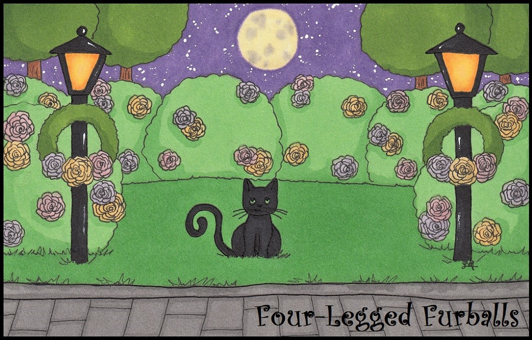 Four-Legged Furballs