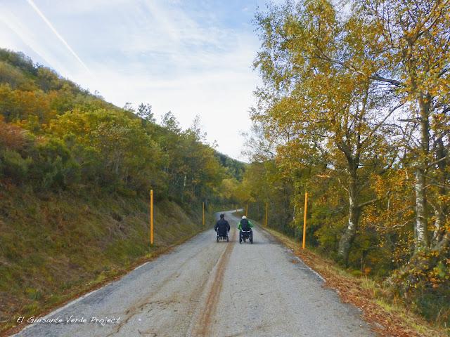 Rodando en busca del Oso Pardo, por El Guisante Verde Project