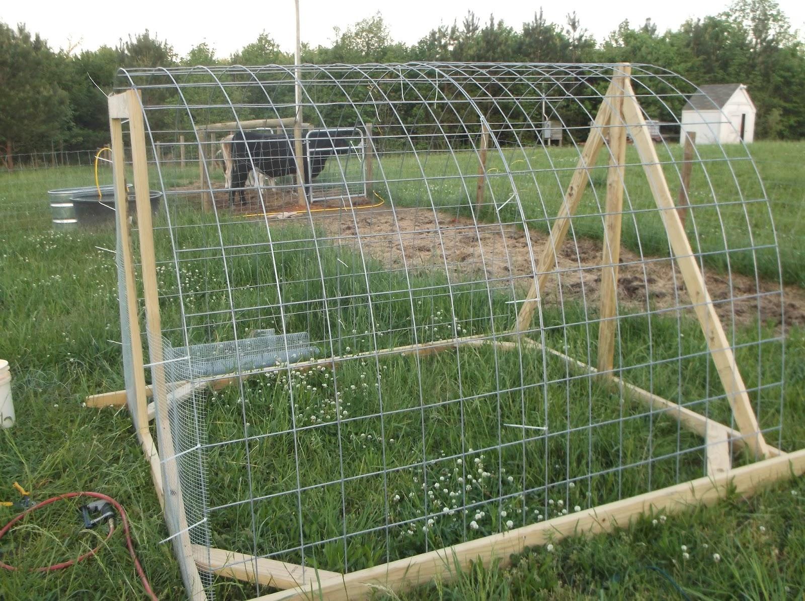 Powell Acres Farm: Chicken Tractor