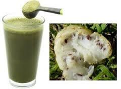 Banyak jenis tumbuhan yang bisa kita faedahkan untuk dijadikan bahan ramuan  Obat herbal diabetes dari kulit manggis dan mengkudu