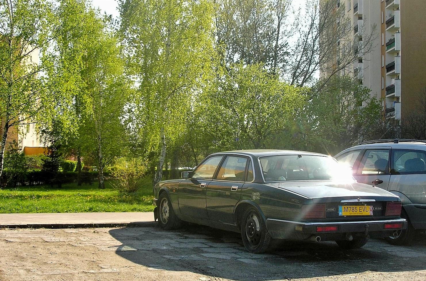 Pobliska Ulica: 1994 Jaguar XJ6 Gold (XJ40)
