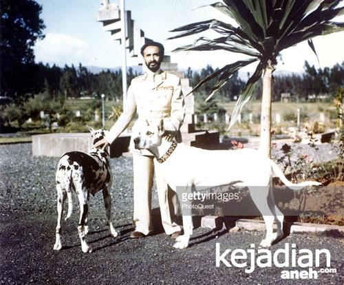 Persahabatan Manusia Dengan Anjing Persahabatan Raja Muslim Dengan Anjing