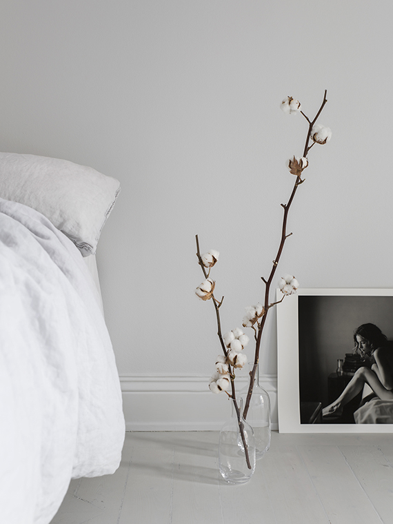 Decorating with cotton branches | Sara Medina Lind