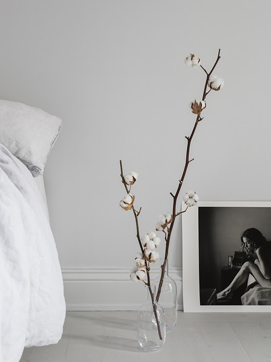 Decorating with cotton branches