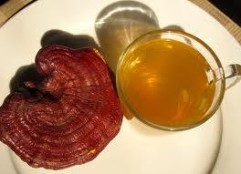 cách dùng nấm linh chi đỏ đơn giản