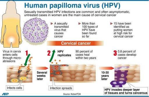 virus HPV, kanser serviks, kanser pangkal rahim