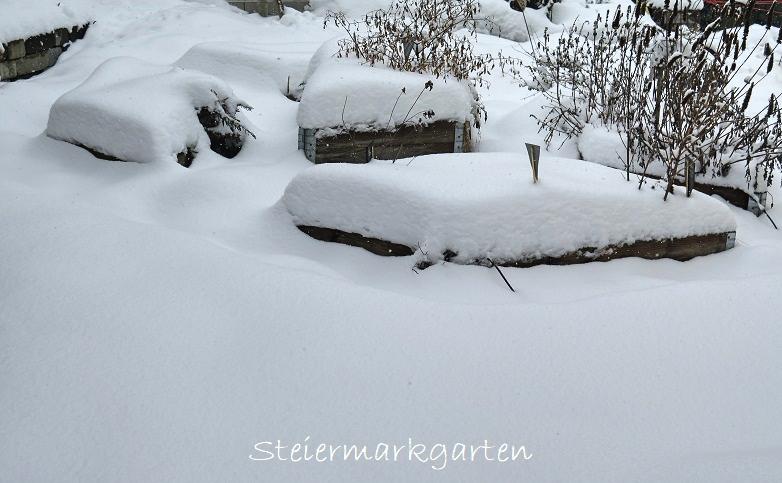 Kräutergarten-im-Schnee-Steiermarkgarten