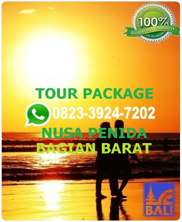 PAKET TOUR 1 HARI NUSA PENIDA BALI, FULL DAY TOUR NUSA PENIDA BALI, BROKEN BEACH, CRYSTAL BAY BEACH, KELINGING BEACH, ANGEL BILLABONG