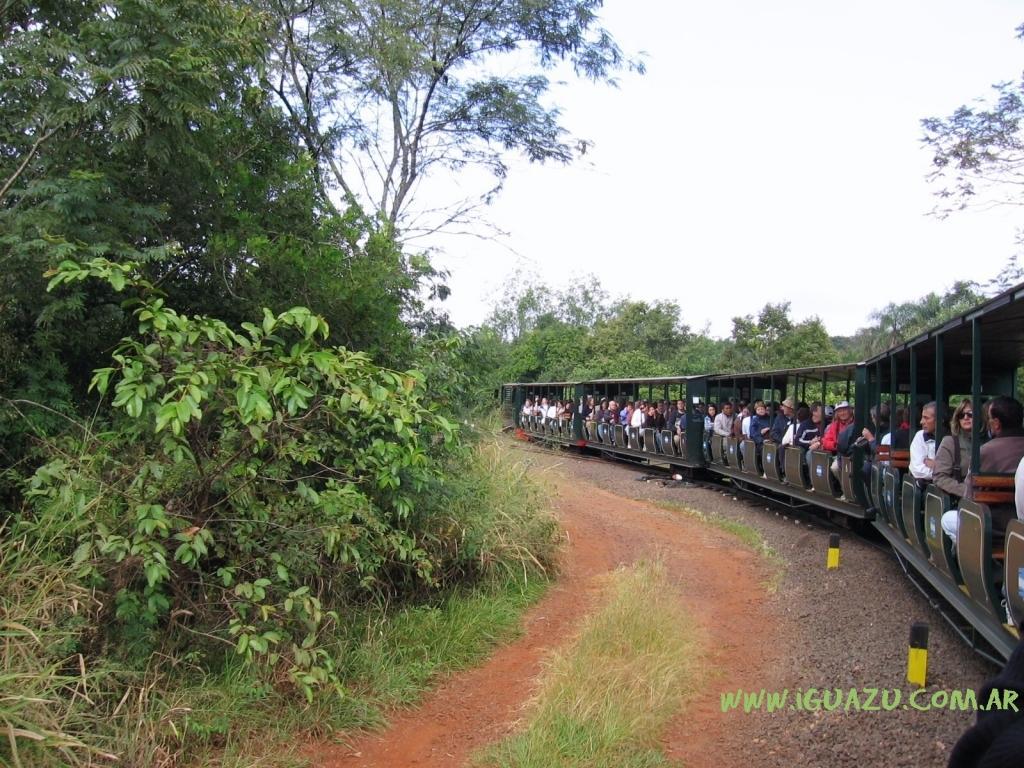 Tren de la Selva Iguazu