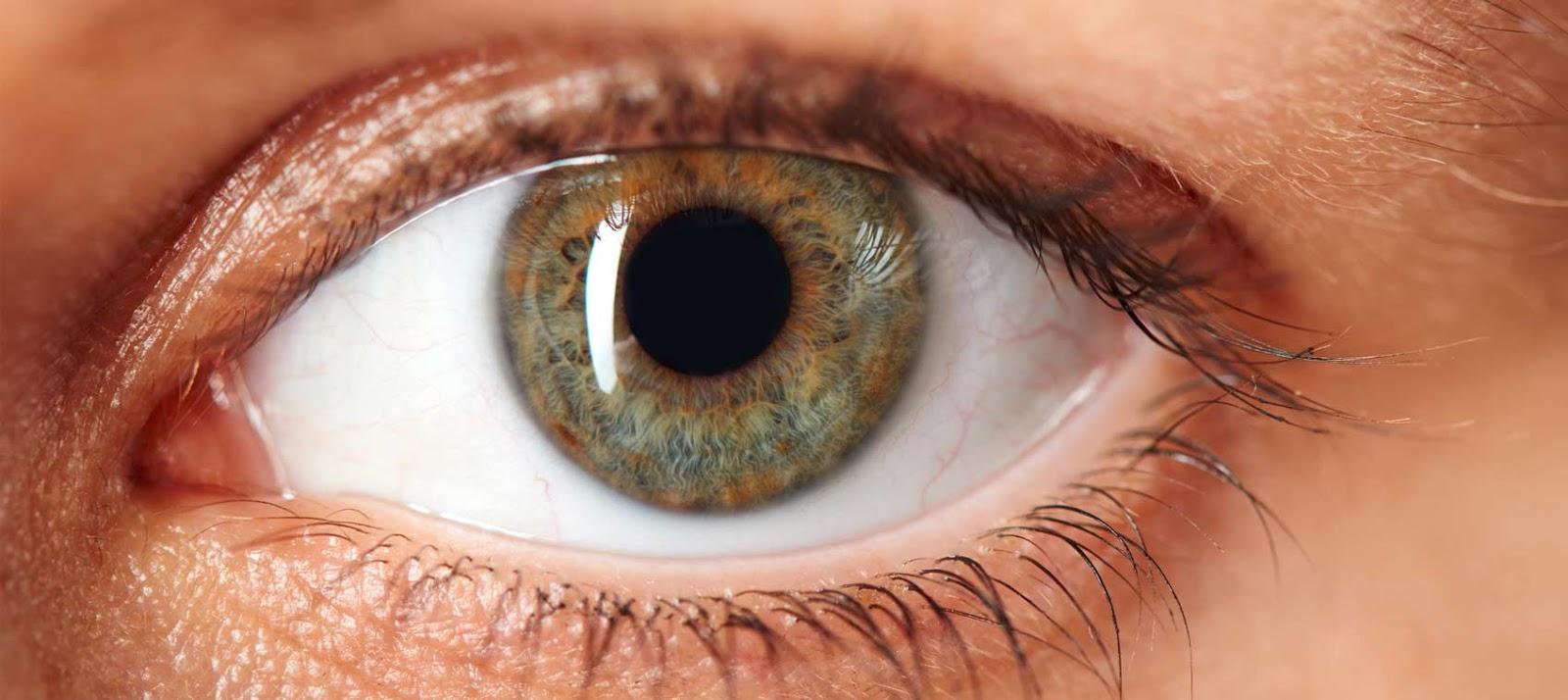 hd-eye-diseases-cover.jpg (1600×714)