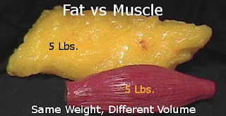 Same weight of fat and muscle, different volume.