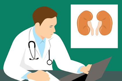Kidney Pain: What is Causing and How to Relieve it?