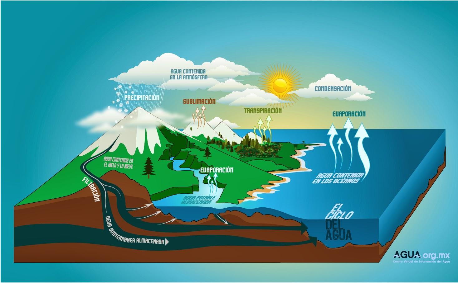 todo sobre los ecosistemas  la hidr u00f3sfera