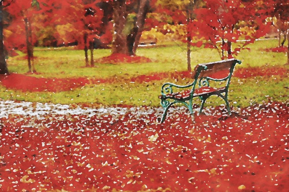 水彩画の紅葉とベンチ