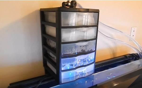 Demikian Ulasan Terkait Dengan Cara Membuat Filter Aquarium Yang Telah Mag Fish Sampaikan Di Atas Semoga Beberapa Langkah Singkat Bisa Kawan
